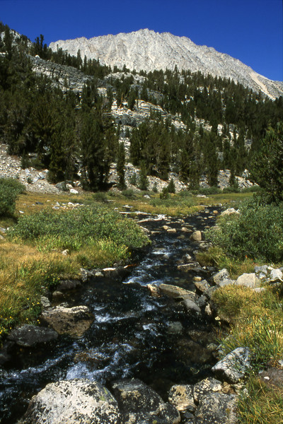 One of the many creeks in the Little Lakes Valley area of the Eastern Sierras.