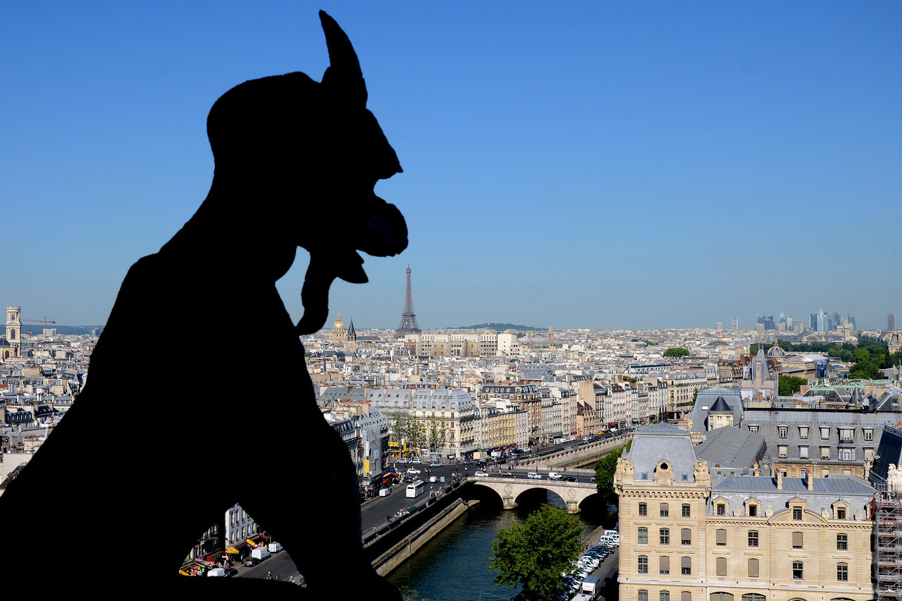 View from the top of Notre Dame with gargoyle and Eiffel Tower