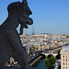 View from the top of Notre Dame, with gargoyle, the Seine and Eiffel Tower