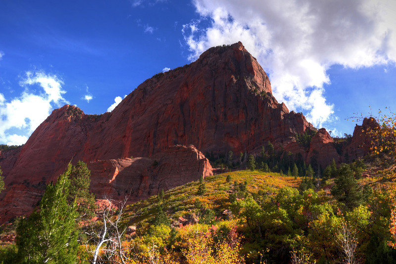 Late afternoon view from the Taylor Creek trail in Zion.