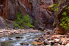 The Virgin River rushes through the Zion Narrows.