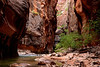 Colorful view entering a narrow section of Zion Canyon.