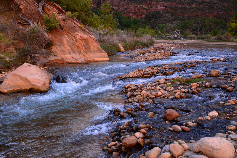 Colorful section of the Virgin River in Zion National Park