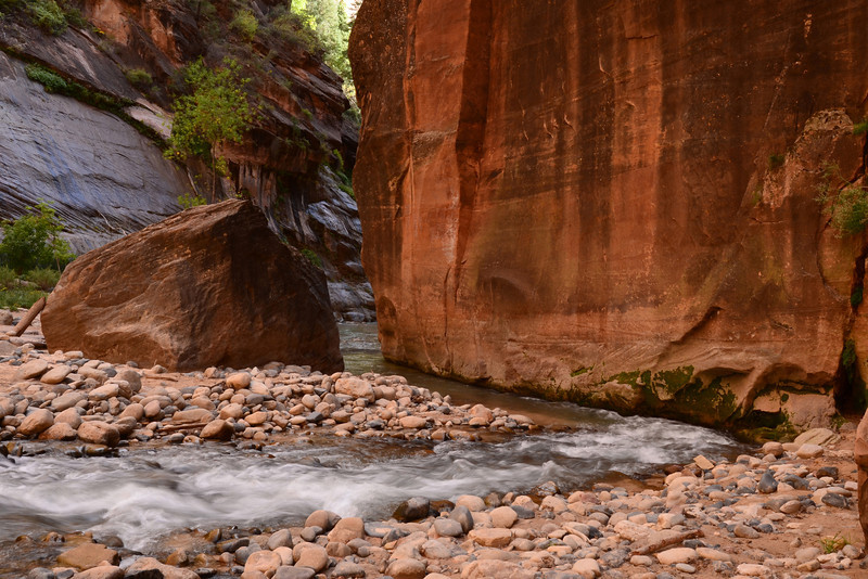 Sharp bend in the river in the Zion Narrows