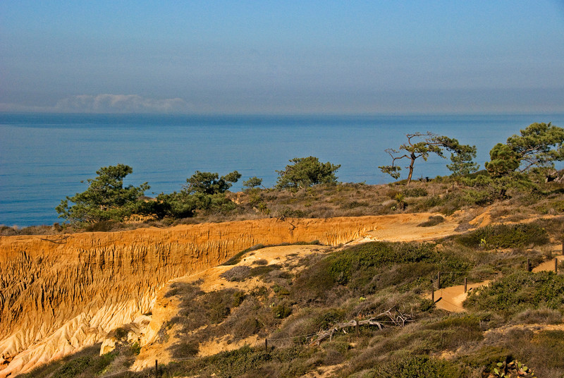 #130 Torrey Pines Cliffs & Ocean