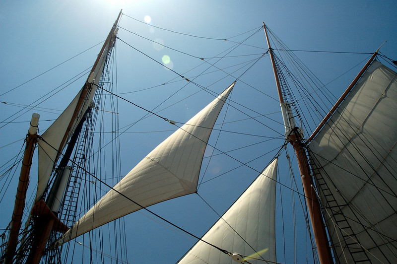 """The """"Star of India's"""" masts and rigging."""