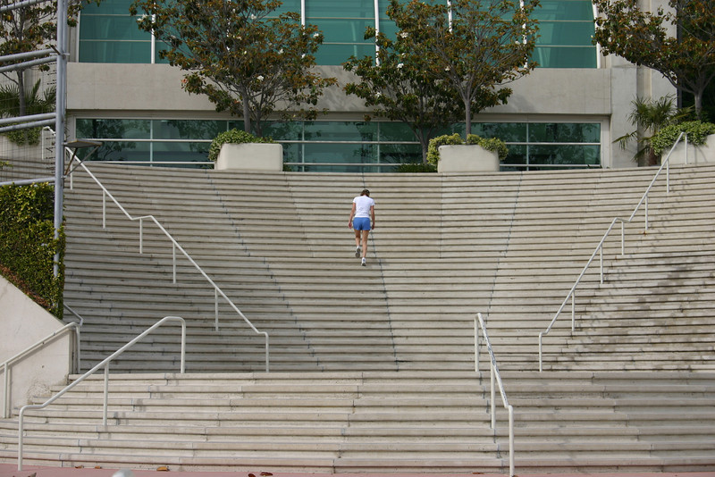 "Dedication This seems like a ""Successories\"" poster, in which our hero faces an enormous obstacles and simply charges on, not heeding the pain sure to result. I just thought, dang, my thighs sure would ache.These stairs are along the boardwalk, between the San Diego Convention Center and Seaport Village"