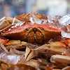 Crab on ice