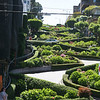The Lombard Street in San Francisco