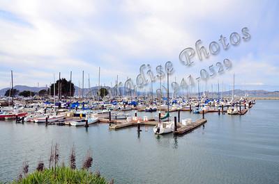 Boats in Marina SF 275 1011