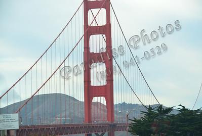 Bay bridge 100111 sun428