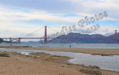 Bay bridge far from Marina SF 100211 386