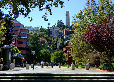 Coit Tower from Levi Plaza