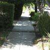 Palo Alto 03