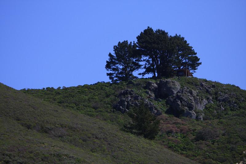 MuirBeach_CA_03 27 2010_003