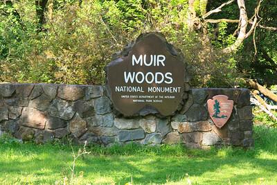 MuirWoods_CA_03 27 2010_001