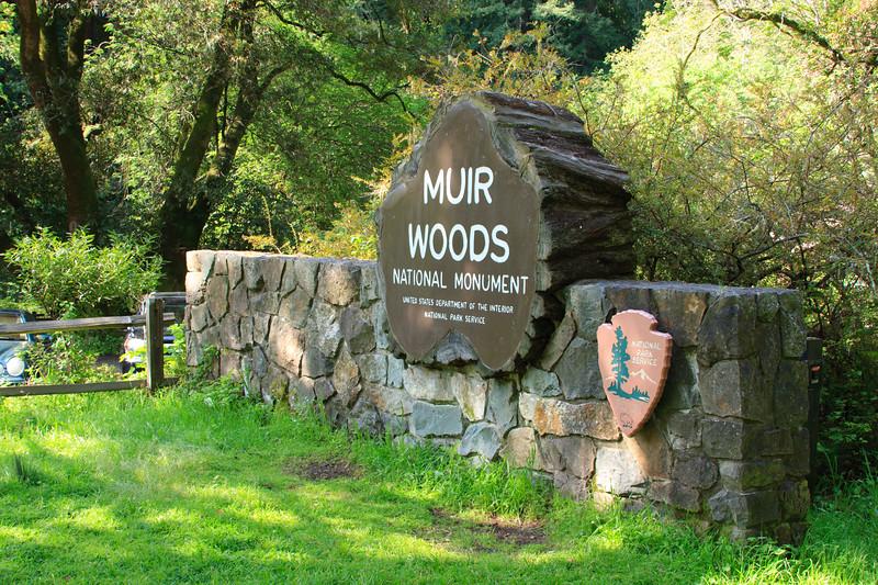 MuirWoods_CA_03 27 2010_002