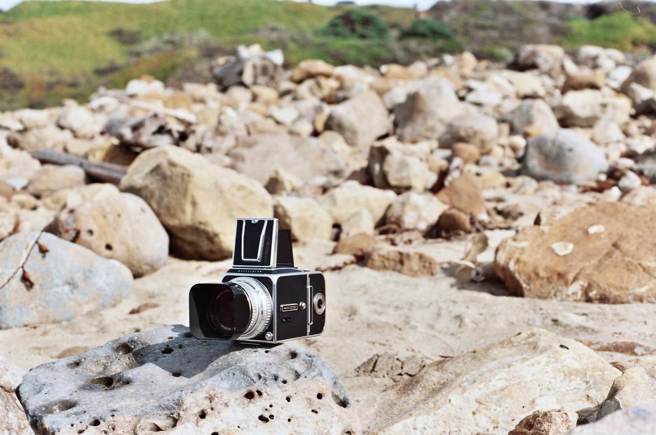 Kodak Ektar 100, Canon AE-1