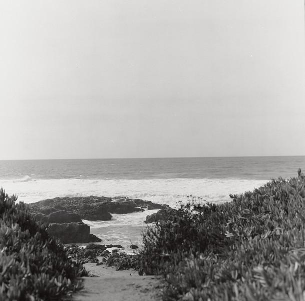 Kodak Panatomic-X (expired 1961), Hasselblad 500c/m