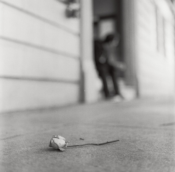 Valentine's Leftovers. Kodak Tri-X, Hasselblad 500c/m.