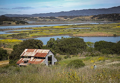 Hiking at Elkhorn Slough