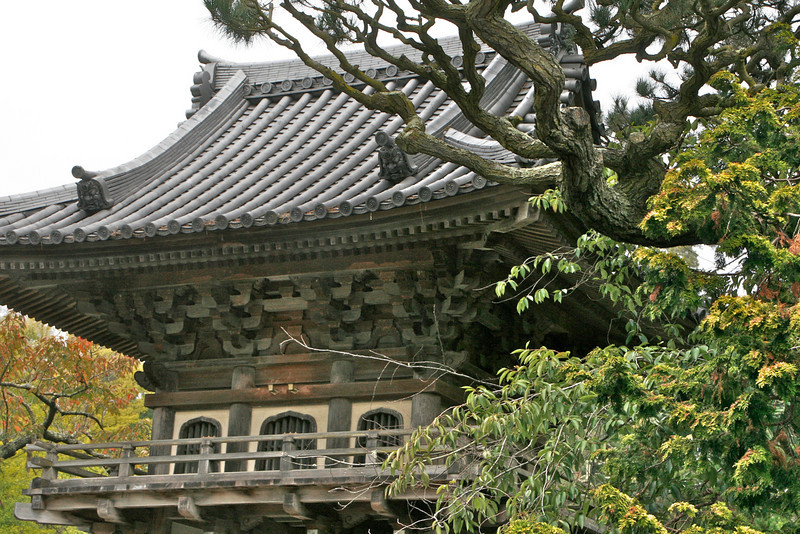 This next group of pictures were taken in the Japanese Tea Garden located in Golden Gate Park. This garden presents some stunning photography possibilities.