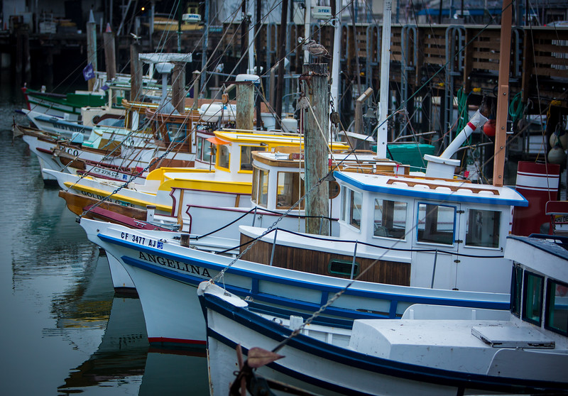 Fishing Boats.  San Francisco, CA.   7494