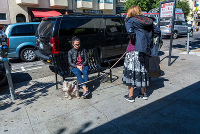 San Francisco, CA, USA, Street Scenes, Local Shops, in Fillmore District