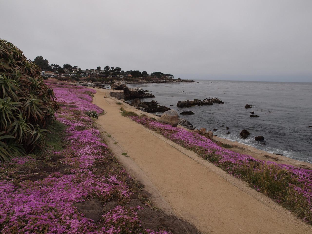 Monterey, California.