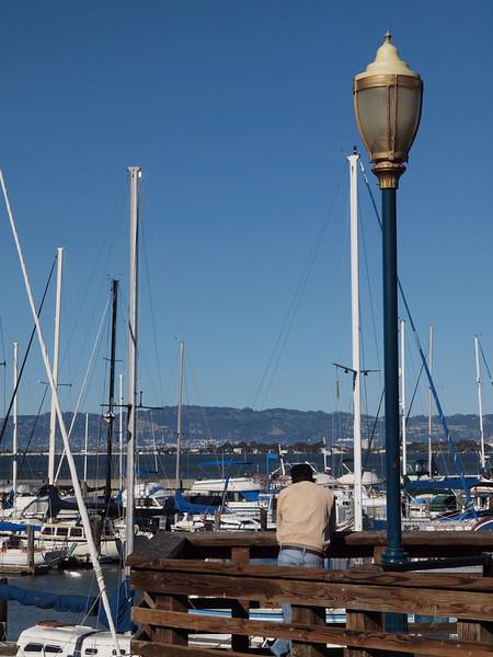 A rare solitary spot on Pier 39.