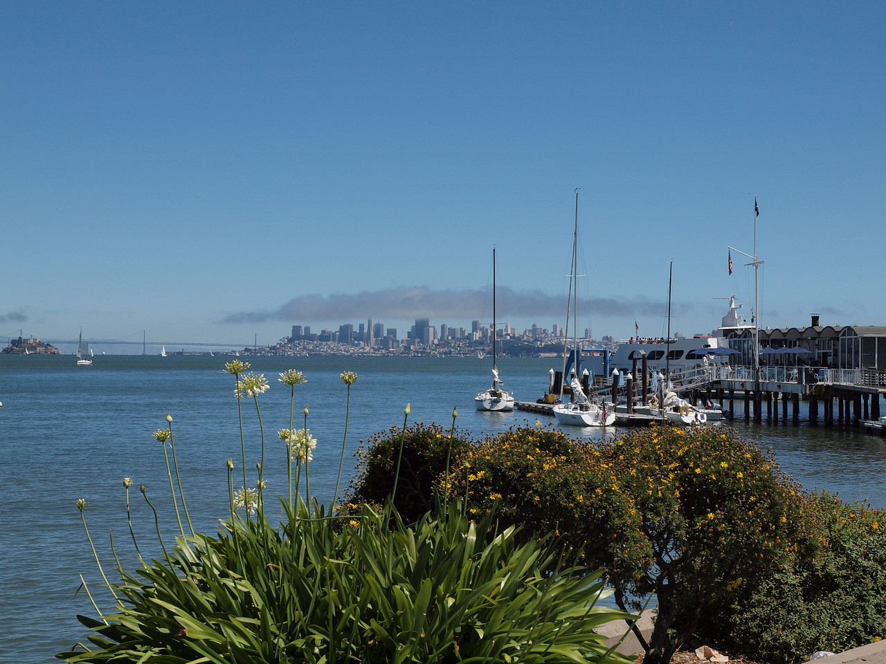 San Francisco from Sausalito. Alcatraz is on the far left.