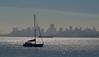 San Francisco skyline across Bay from Sausalito
