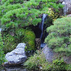 Waterfall at the Japanese Tea Garden