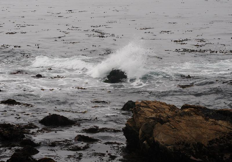 Pebble Beach (1)