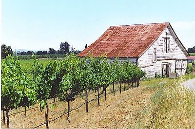 San Francisco, Wine Country and Northern California Coast