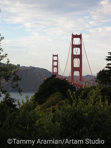 from Presidio, August 2009
