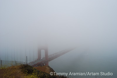 North tower, shrouded in fog, from Marin Headlands, June 2007