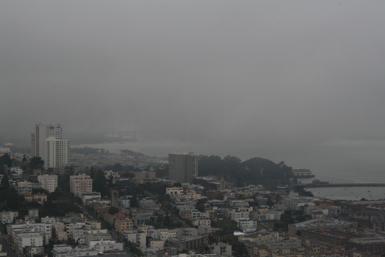 Feb. 19/08 - S.F. from top of Coit Tower (Golden Gate Bridge obscured by fog)