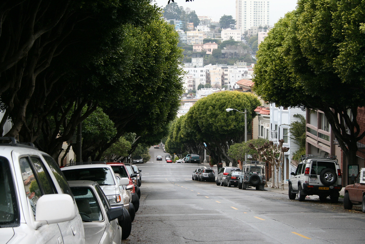Feb. 19/08 - Looking down Lombard St., San Francisco