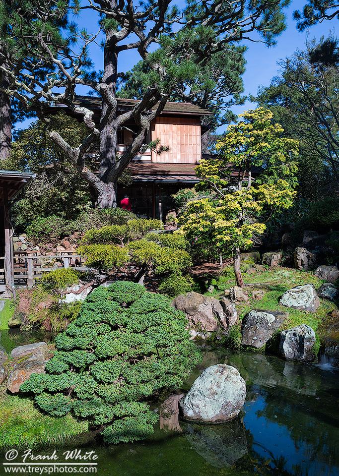 Japanese House gardens in San Francisco