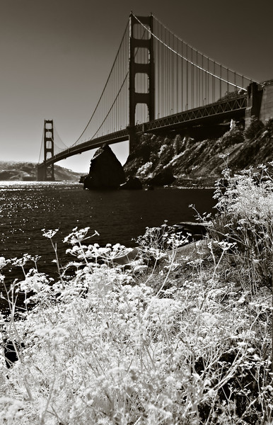246_San Francisco_L0066-Edit