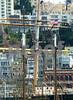 P1240676 Masts, SF Bay