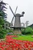 P1230080 Windmill w Flowers