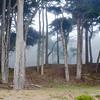 Land's End Park
