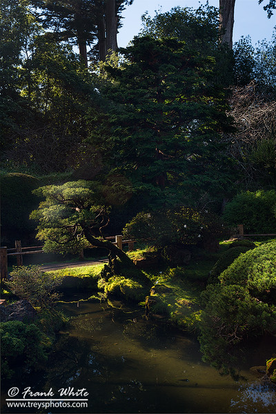 Japanese House gardens in San Francisco #2