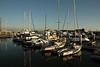 Boats in the Oakland Marina near Jack London Square