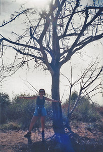 1995 Sam Merrill Trail, San Gabriel Mountains, Las Flores Canyon, Angeles National Forest, Los Angeles County, CA