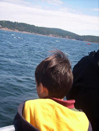 San Juan Island, Washington State July 2006