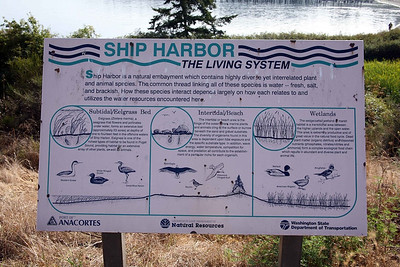 Ship Harbor The Living System