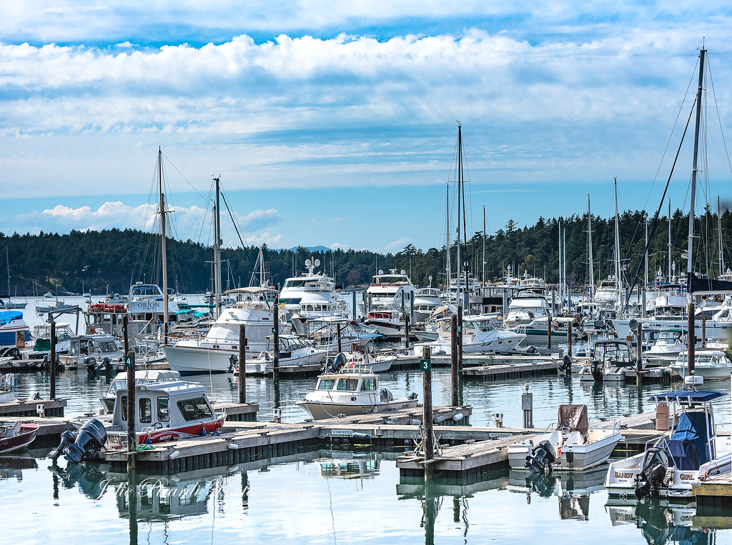 Another view of Roche Harbor, WA.